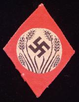 WWII GERMAN FEMALE RAD INSIGNIA